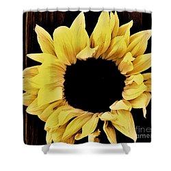 Pretty Macro Sunflower Shower Curtain