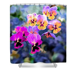Pretty Pansies 3 Shower Curtain