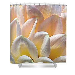 Pretty Pastel Petal Patterns Shower Curtain
