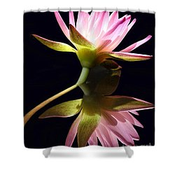 Pretty Pink Reflections Shower Curtain by Sabrina L Ryan