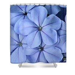 Pretty Plumbago Shower Curtain by Sabrina L Ryan