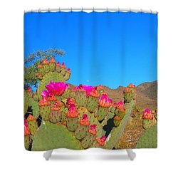 Prickly Pear Blooming Shower Curtain