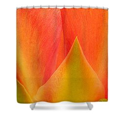 Shower Curtain featuring the photograph Prickly Pear Flower Petals Opuntia Lindheimeni In Texas by Dave Welling
