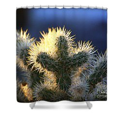 Prickly Sunset Shower Curtain