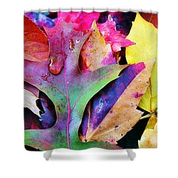 Shower Curtain featuring the photograph Primary Colors Of Fall by Judy Palkimas
