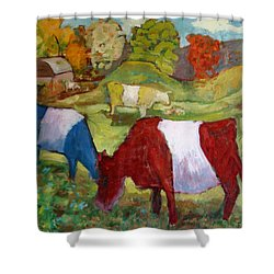 Primary Cows Shower Curtain