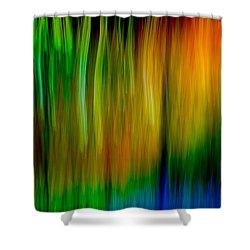 Primary Rainbow Shower Curtain by Darryl Dalton