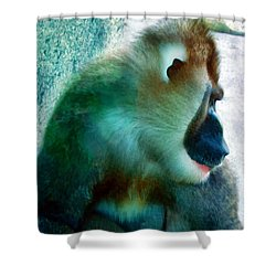 Shower Curtain featuring the photograph Primate 1 by Dawn Eshelman