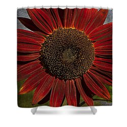 Primitive Sunflower 2 Shower Curtain