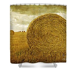 Prince Edward Island Pastoral Farm Fields Shower Curtain by Edward Fielding