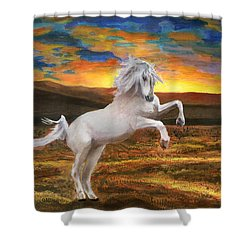 Prince Of The Fiery Plains Shower Curtain by Peter Piatt