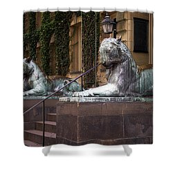 Princeton Tigers Shower Curtain
