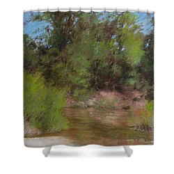 Prints Wall Art Collections Shower Curtain by N S