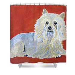 Prissy Shower Curtain by Suzanne Theis