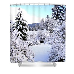 Pristine Winter Trail Shower Curtain by Will Borden