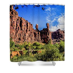 Private Home Canyon Dechelly Shower Curtain by Bob and Nadine Johnston