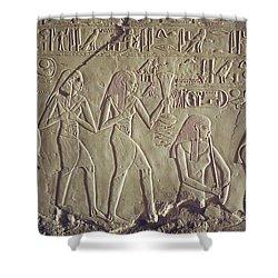 Private Tomb Of Kheruef Kheruf Cheriuf Tt 192 Asasif-stock Image-fine Art Print-valley Of The Kings Shower Curtain