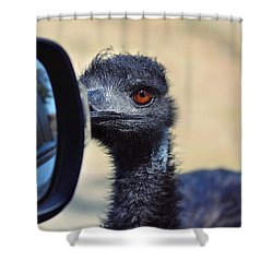 Proceed With Caution Shower Curtain