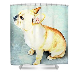 Profile In Frenchie Shower Curtain