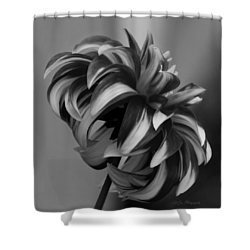 Profile Of Not Santa Two In Black And White Shower Curtain