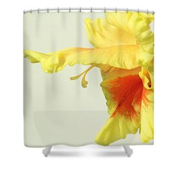 Profiling Glady Shower Curtain