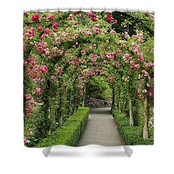 Shower Curtain featuring the photograph Rose Promenade   by Natalie Ortiz