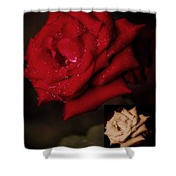 Promise Of Tomorrow Shower Curtain by DigiArt Diaries by Vicky B Fuller