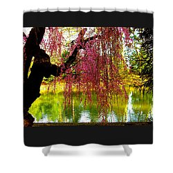 Prospect Park In Brooklyn Shower Curtain