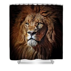 Proud N Powerful Shower Curtain by Elaine Malott