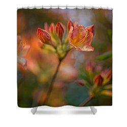 Proud Orange Blossoms Shower Curtain by Mike Reid