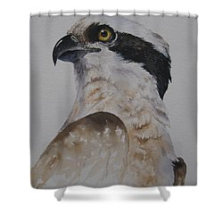 Proud Osprey Shower Curtain