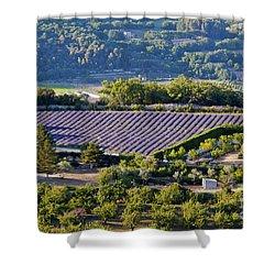 Provence Farmland Shower Curtain by Bob Phillips