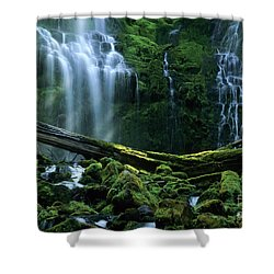 Proxy Falls Shower Curtain