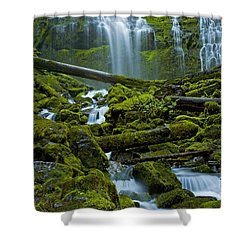 Shower Curtain featuring the photograph Proxy Falls by Nick  Boren