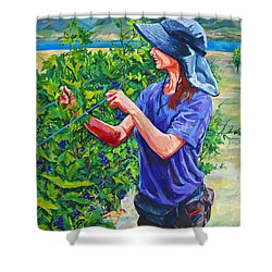 Pruning The Pinot Shower Curtain by Derrick Higgins