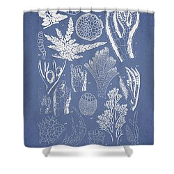 Pterosiphonia Fibrillosa Shower Curtain by Aged Pixel
