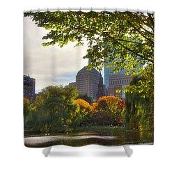 Public Garden Skyline Shower Curtain by Joann Vitali