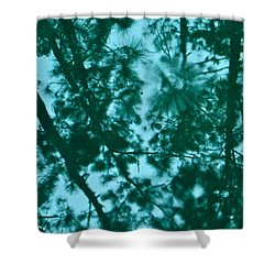 Puddle Of Pines Shower Curtain