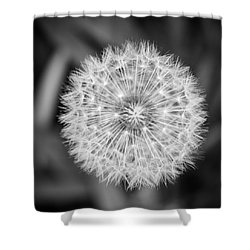 Puff Shower Curtain