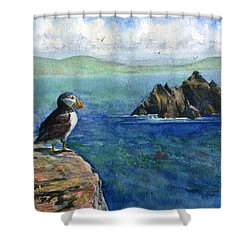 Puffin At Skellig Island Ireland Shower Curtain by John D Benson