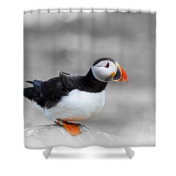 Puffin Bokeh Shower Curtain
