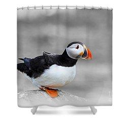 Puffin Bokeh Shower Curtain
