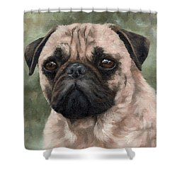 Pug Portrait Painting Shower Curtain by Rachel Stribbling