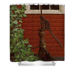 Pump Shower Curtain by Jack Zulli
