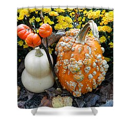 Pumpkin And Squash Shower Curtain by Emmy Marie Vickers