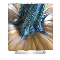 Shower Curtain featuring the photograph Pumpkin by Beth Vincent