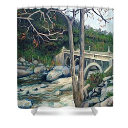 Pumpkin Hollow Bridge Shower Curtain