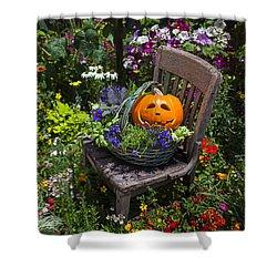 Pumpkin In Basket On Chair Shower Curtain