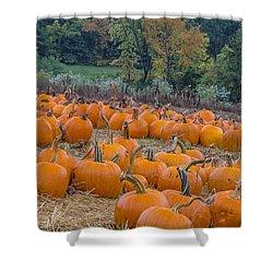 Pumpkin Parade Shower Curtain