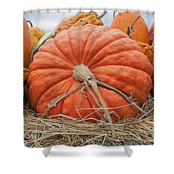 Pumpkin Times Shower Curtain